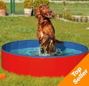 Comprare una piscina per cani varie for Comprare piscina