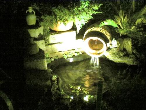 Laghetto esterno altri animali for Laghetto giardino zanzare